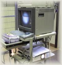 vet video otoscopy